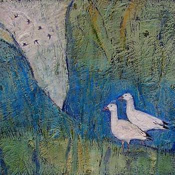 Two Snow Geese Stay Behind by Cynthia Scontriano schildhauer