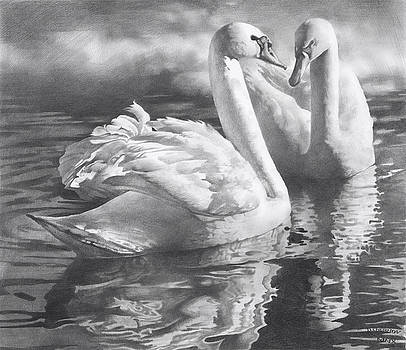 Two Swans by Denis Chernov