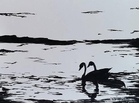 Two Swans by Sallie Wysocki