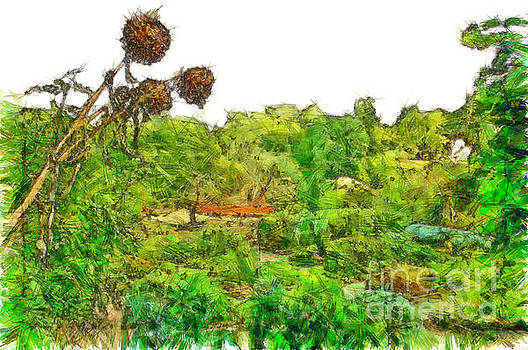 Two thistles in the garden of the simple by Giuseppe Cocco