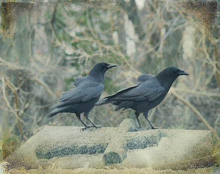 Two Tombstone Crows by Gothicrow Images