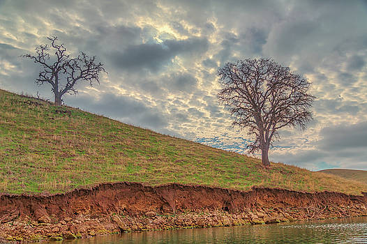 Two Trees and Clouds at Los Vaqueros by Marc Crumpler