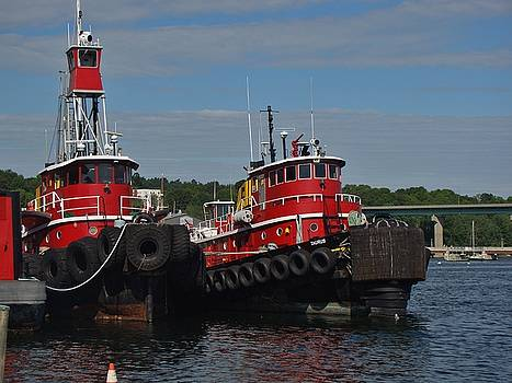 Two Tugs by Yvonne Breen