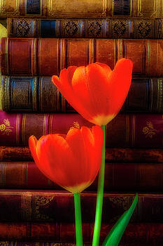 Two Tulips And Stack Of Old Books by Garry Gay