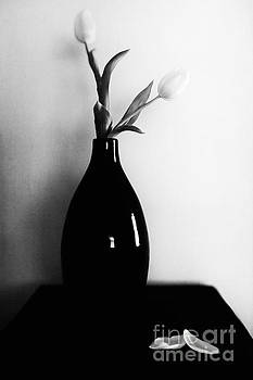 Two Tulips by Lisa McStamp