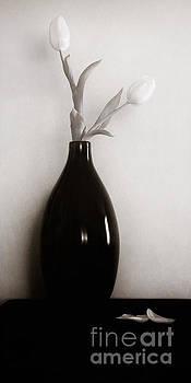 Lisa McStamp - Two Tulips Warm Tone
