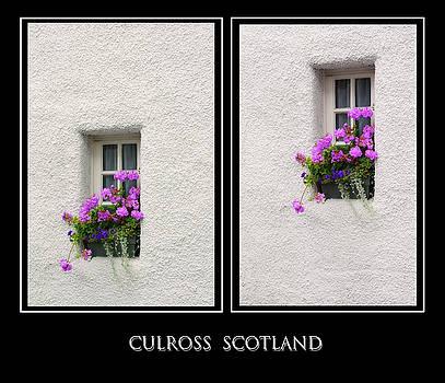 Jenny Rainbow - Two Windows with Geranium. Culross. Scotland