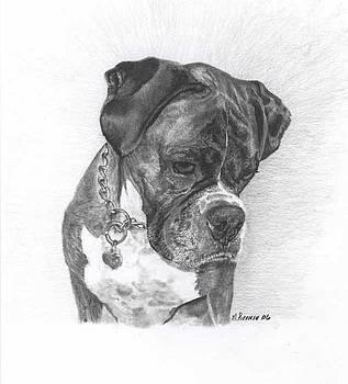 Tyson by Marlene Piccolin