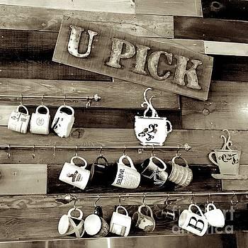 U-pick 2 by Wonju Hulse