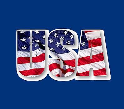 Art America Gallery Peter Potter - U. S. A. Red White Blue Design