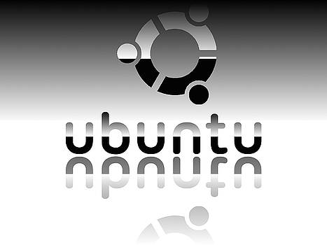Ubuntu Mirror Reflex by Hector Lozano