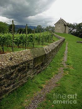 Gregory Dyer - Ufenau Island Switzerland