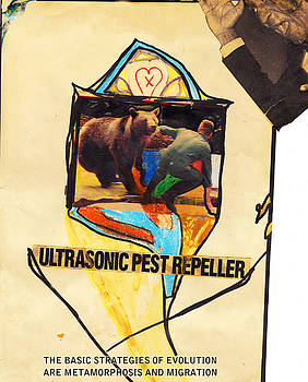 Ultrasonic Pest Repeller 1989 by Will Brodie
