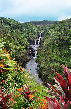 Umauma Falls Hawaii by Denise Bird