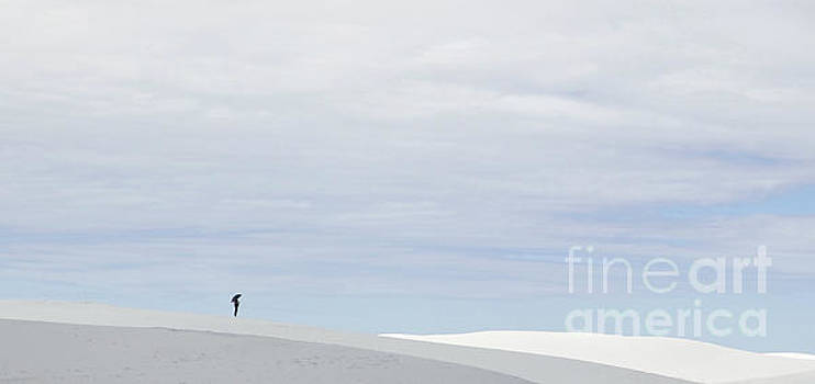 Umbrella at White Sands by Glennis Siverson