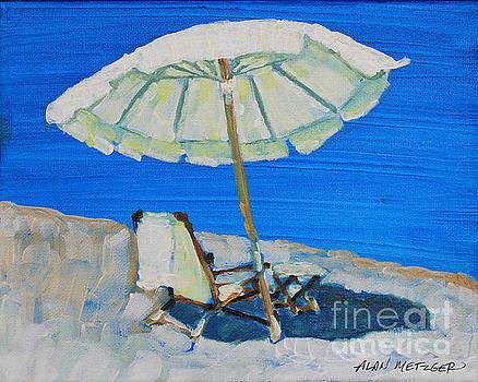 Umbrella Shade by Alan Metzger