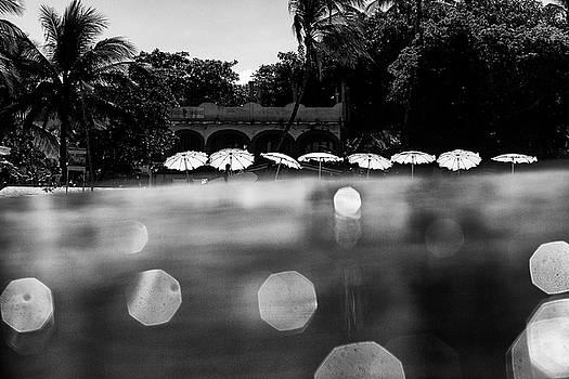 Umbrellas 2 by Nik West