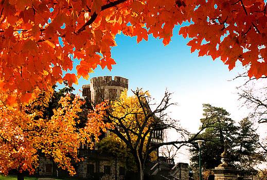 UMKC campus autumn by Steve Karol