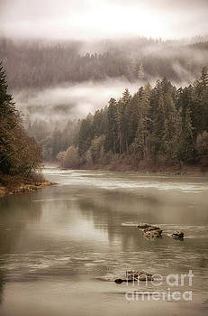 Umpqua River Fog by Timothy Johnson