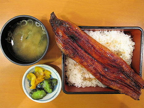 Unagi Lunch Box by Rick Macomber