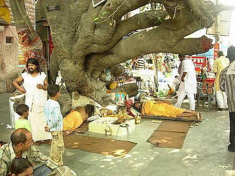 Under An Ancient Tree by Karuna Ahluwalia