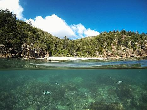 Under and over the sea at Hook Island, The Whitsundays by Keiran Lusk