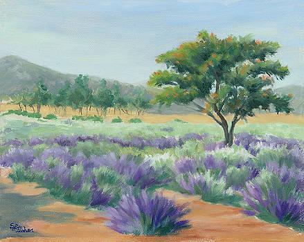 Under Blue Skies in Lavender Fields by Sandy Fisher