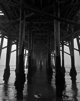 Under Pier With Fog by Richard Hinds