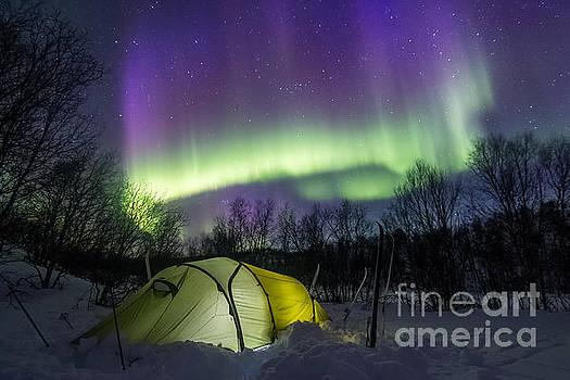 Under the Aurora by Mikko Karjalainen