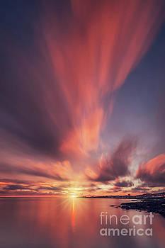 Under The Flaming Skies by Evelina Kremsdorf