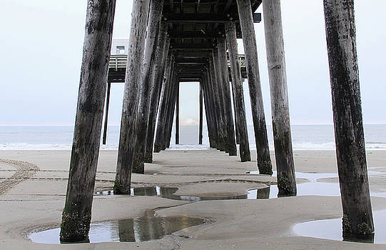 Under the Pier by Sharon Batdorf