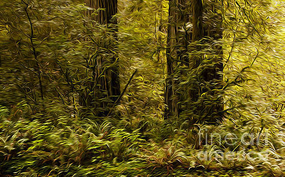 Vivian Christopher - Under the Redwoods 1