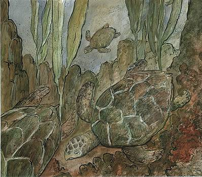 Under The Sea A Turtles Life by Gerry High