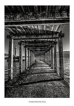 Under Whitby Pier  by Phil Fiddyment