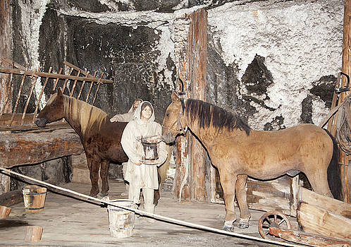 Ramunas Bruzas - Working In Salt Mine