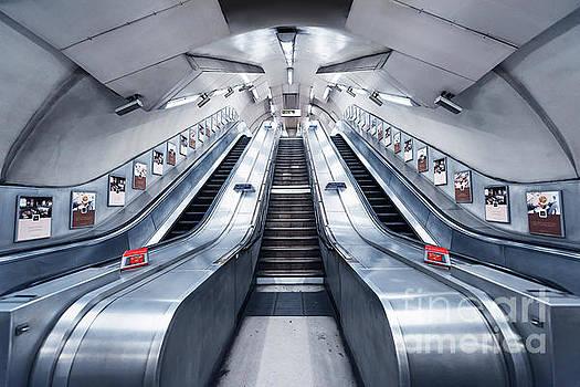 Svetlana Sewell - Underground Lights