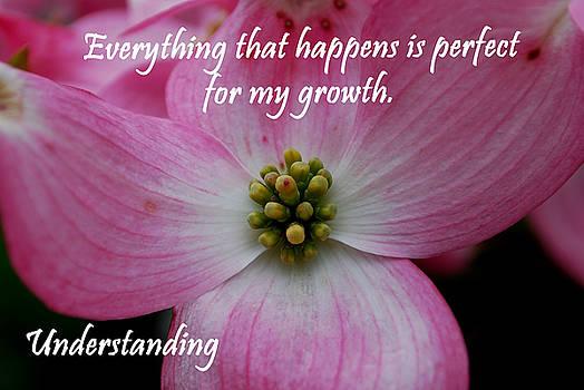 Michelle  BarlondSmith - Understanding Affirmation