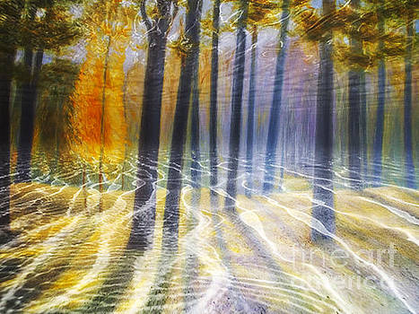 Algirdas Lukas - Underwater Forests Flow
