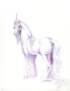Unicorn by Christine Winters