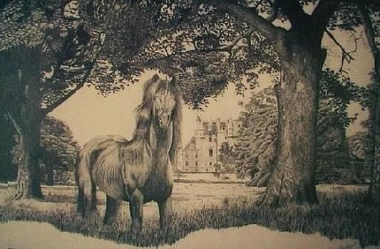 Unicorn by Dan Hausel