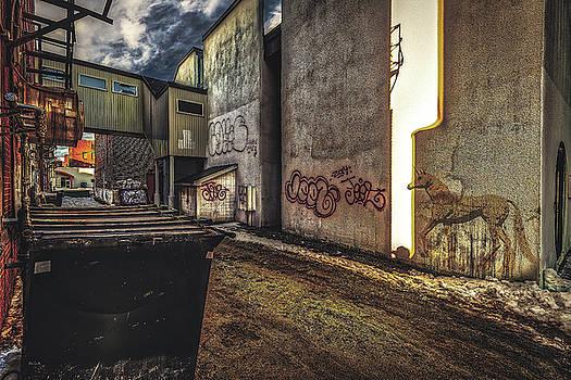 Unicorn In The Alley by Bob Orsillo