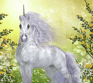 Corey Ford - Unicorn White Male