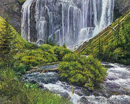 Union Falls by Steve Spencer