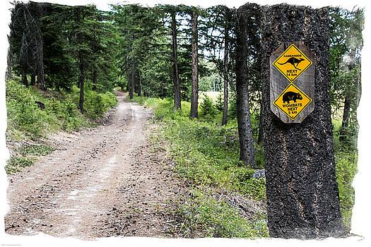 Mick Anderson - Unique Signs In Montana