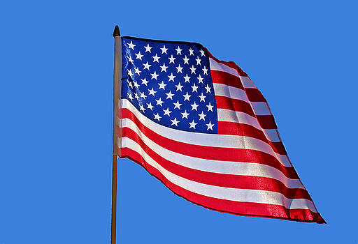 United States Flag Solid Blue Sky by Joey OConnor