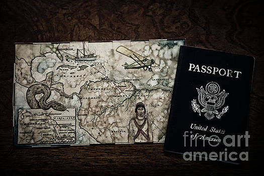 United States of America Passport by Dale Powell