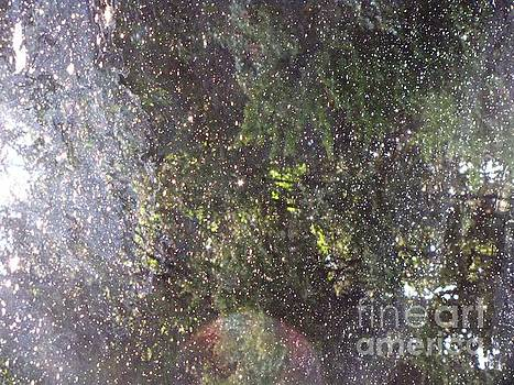 Universe in Water by Melissa Stoudt