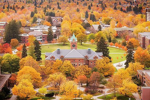 University of Montana Autumn by Scott Wheeler