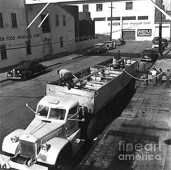 California Views Mr Pat Hathaway Archives - unloading sardines trucked in from southern California 1950