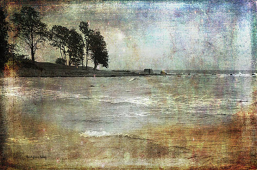 Untamed Coast by Randi Grace Nilsberg